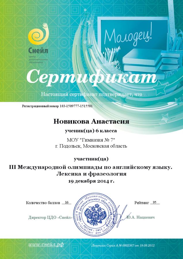 Олимпиада Новикова Настя